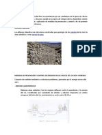 defensas ribereñas triptico.docx
