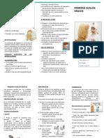 142161647-Triptico-Primeros-Auxilios-Word.docx