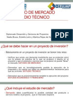 Estudios de Mercado y Tecnico