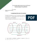 Calculo Diferencial Composicion de Funciones