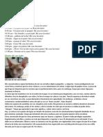 Diario de Un Perro y Un Gato