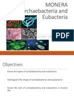4095_Archaebacteria Dan Eubacteria2016