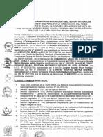 Convenio Intercambio Prestacional_SIS_FISSAL.pdf