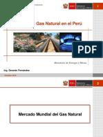 Gerardo FErnandez Futuro Del GN en El Peru
