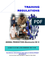 Animal Production (Ruminants) NC II.doc