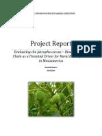 Evaluating Jatropha Curcas Aktu 0