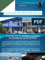Programa Integral de Piscicultura-web