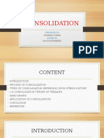 Consolidation Ppt Final