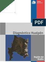 Hualpen Diagonostico