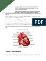 anatomi fiaiologi jantung