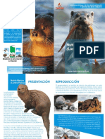 Revista de La Nutria Marina