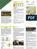 4. Triptico crianza de cuyes.pdf