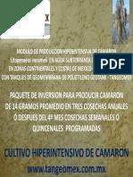 Camaron-2011.pdf