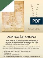 anatomiageneralidades-