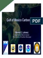 Lohrenz Gulf of Mexico Carbon Cycling GOM Workshop 2 36623