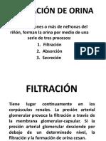 FORMACIÓN-DE-ORINA (1).pptx