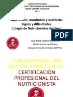 NORA PALOMINO Supervisión, Monitoreo y Auditoría.sineACE. Pptx