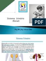 10 Sistema Urinário