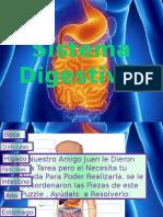 Sist Digestivo
