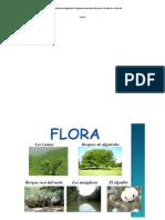 Flora y Fauna de La Costa - Sierra y Selva