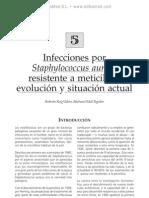 Infecciones por S. aureus resistente a meticilina. Evolucio¦ün y situacio¦ün actual