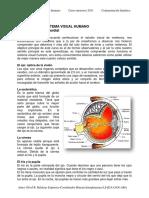 Leccion 4 Anatomia del sistema visual. Contaminación lumínica.pdf