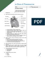 SAINS T3 BAB 2 - PEREDARAN DARAH DAN PENGANGKUTAN (NOTA RINGKAS).pdf