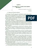 Educacion Ambiental Breve Recorrido Historico (volume 2)