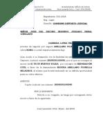 Consigna Deposito Judicial