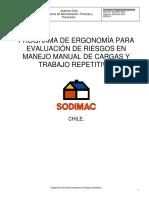 292380284-01-Programa-de-Ergonomia.pdf