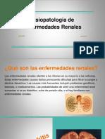 fisiopatologiadeenfermedadesrena 1 (1)