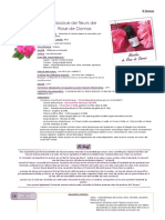 Absolue de Fleurs de Rose de Damas - Rosa Damascena