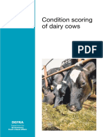 Farmers-5476.pdf