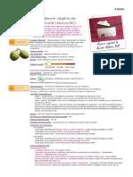 Beurre Végétal de Karité Nilotica BIO - Vitellaria Paradoxa