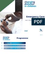 3a Emergency Care DKA (UK) FINAL