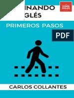 Guía_Primeros_Pasos.pdf