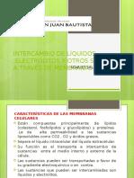 TRANSPORTE DE SUSTANCIAS.pptx
