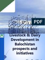 Live stock dairy development in Balochistan