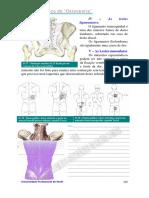 157310384-osteopatia-parte3