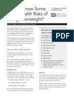 hlthrisks1104.pdf