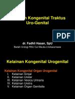 Kelainan Kongenital Urogenital