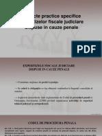 Expertiza Fiscala Judiciara Dispusa in Cauza Penala