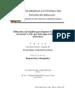 Filtracion a nivel piloto tesis.pdf