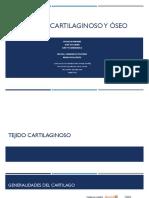 Tejido Cartilaginoso y Óseo