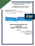 Agenda Dirigintelui Nou (1).docx