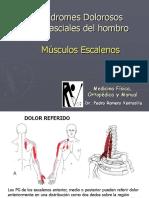 04. SMF Escalenos PRV