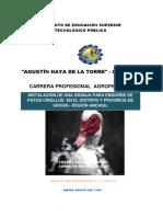 Proyecto Productivo Pato 2015.docx