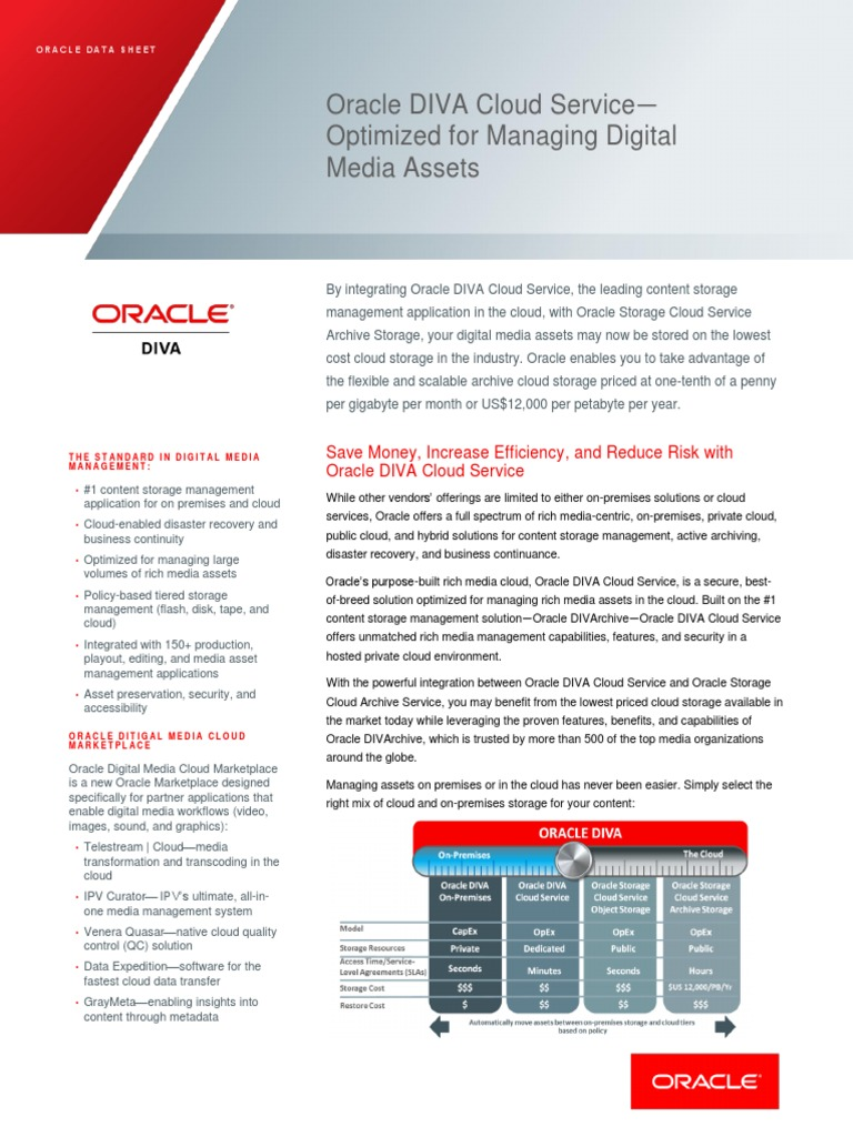 Oracle Diva Cloud Ds 2720814 | Cloud Computing | Computer Data Storage