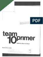 TEAM 10 primer.pdf