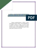 PROYECTO panel solar casero.docx